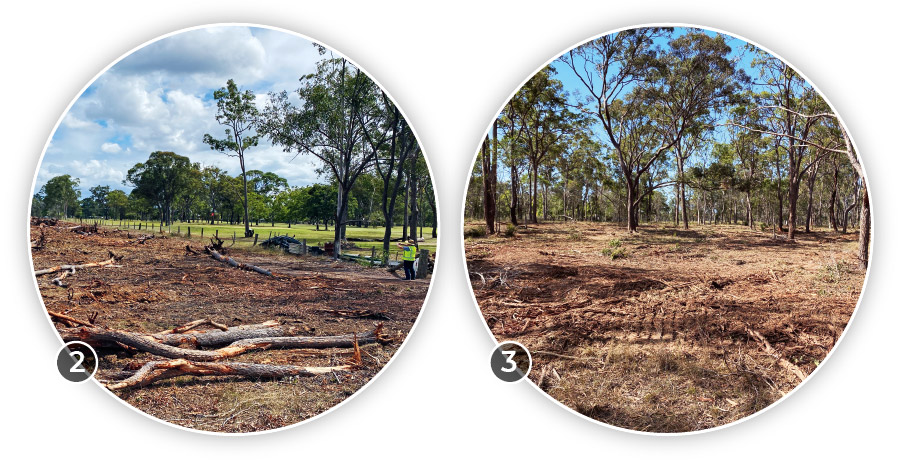 Land clearing commences